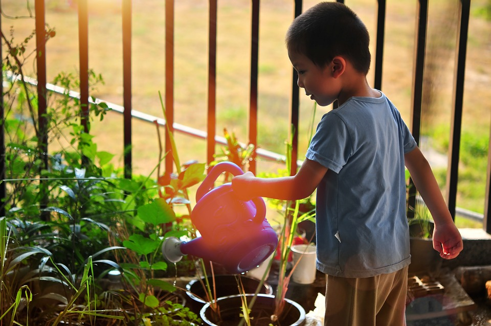 N.C. State and Cabarrus Health Alliance Team Up to Provide Gardens for Local Schools